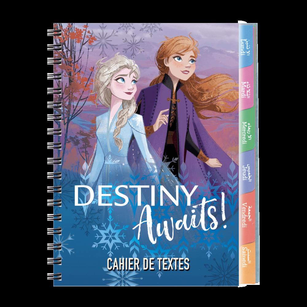 1--cahier-de-textes-Disney-17x22cm-couverture-plastique