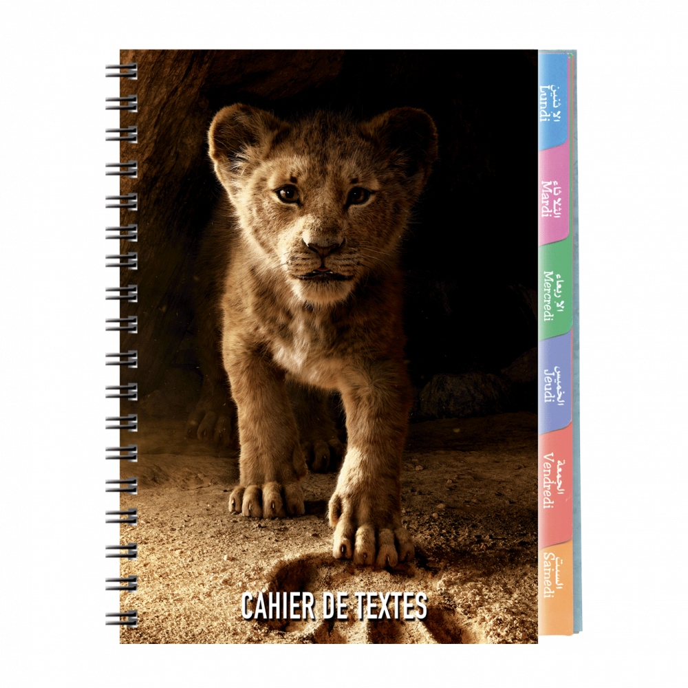 5--cahier-de-textes-Disney-17x22cm-couverture-plastique